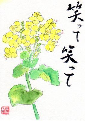 nanohana3.jpg