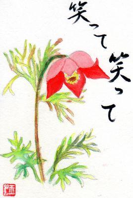 okinagusa.jpg